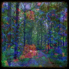 Walking in a Forest in Migrania (Joana Rojas - still here) Tags: art colors perception patterns digitalart experience migraines fantasyworld theunforgettablepictures theawardtree maxfudgeaward amazingeyecatcher struckbyrainbow migrainia
