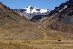 IMG_5746 (nouailleric) Tags: peru canon andes prou eos500d