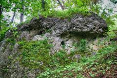Loch (shortscale) Tags: fels wald hhle schwbischealb