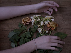 J158 (charlotte.boullier) Tags: wood flowers roses people plants nature colors girl strange dark nude dead photography weird hands arms faded brunette nudity challenge 365days 365project 365challenge projet365