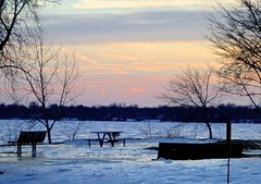 Sunset Winter Picnic, Anyone? . (ikan1711) Tags: trees winter sunset snow ice clouds table picnic skies montreal lakeshore treeoutlines scenes picnictable settingsun snowscenes barebranches wonderfulnature lakestlouis lacstlouis lakeshoreroad waterscenes sunsetskies westislandareaofmontrealqc sunsetwinterpicnicanyone