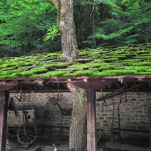 #classic #stone #roof #village #architecture in #etar #ethnographic #town #gabrovo #bulgaria   #Етър #габрово