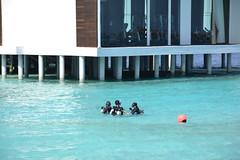 Jumeirah Dhevanafushi_0388 (Simon_sees) Tags: travel vacation holiday island tropical maldives luxury 5star jumeirah dhevanafushi