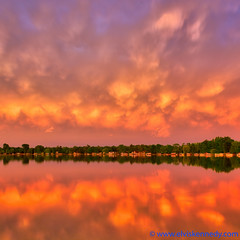 100 Days of Summer #9 - Sunset Firestorm (elviskennedy) Tags: county sunset summer vacation sky orange sun lake storm reflection tree green water colors june wisconsin clouds zeiss fire mirror evening high colorful long exposure waves dynamic outdoor sony scenic elvis calm 25 cumulus thunderstorm f2 lightning alpha range wi spruce kennedy hdr highdynamicrange a7 25mm thunderhead batis oconto kellylake a7r 100daysofsummer wwwelviskennedycom elviskennedy a7rii