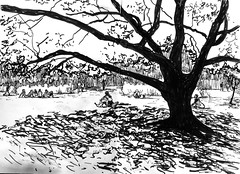 1578_2 ( ) Tags: trees summer ink 365 sketches edding brushpen    kalachevaschoolonline   extrimesketching