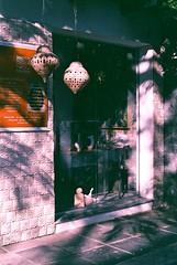 Morning Light (alvarogeorg) Tags: film analogue 35mm exakta exaktavarex exaktavarexiia ihagee carlzeissjena tessar konicafilm konicavx konicavx400 expiredfilm lomoeffect morning morninglight colorfilm