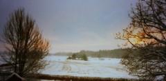 Jäder (Ken-Zan) Tags: trees wintermorning kenzan jäder ljunghav