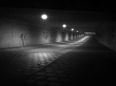 IMG_5105 (jolin cheng) Tags: bw amsterdam fog night streetphotography tunnel netherland nightscene iphone negroyblanco iphoneography