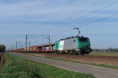 BB 27044 / Morbecque (jObiwannn) Tags: train locomotive prima alstom fret 37000 alsthom 27000 ferroviaire 37500