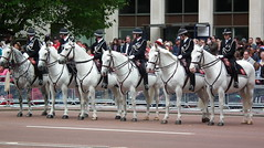 Metro Riders (dhcomet) Tags: horse london police queen metropolitan queenelizabeth royalfamily 60years metpolice diamondjubilee