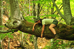 Hello ! (.:: Maya ::.) Tags: park wild woman mountain tree nature girl forest spring woods bulgaria national wilderness beech laying balkan stara reka           mayaeye mayakarkalicheva