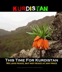 Kurdistan`s Nature (Kurdistan Photo كوردستان) Tags: love nature landscape iran iraq loves turkish kurdistan kurdish kurd naturesfinest kurden peshmerga کوردستان kuristani kurdistan2all kurdphotography kürdistan كوردستان kurdistan4allكوردستان kurdene kurdistan2008 kurdistan2006 siroshtî