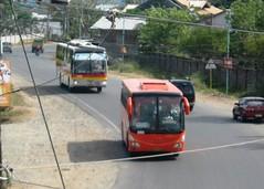 GMW Trans & Victory Liner (Guzmán Liner Inc.) Tags: victory trans inc liner gmw vli victoryliner