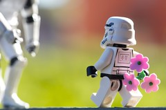 A surprise gift (Kalexanderson) Tags: family pink flowers stilllife trooper toys photography starwars play lego sweden stockholm mother son gift surprise stormtrooper emotions mothersday suprise familylife ordinarylife realtions