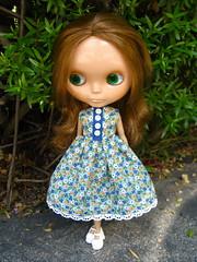 Flower Fields Dress for Blythe