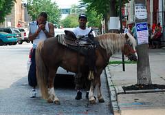 No Parking (Marcellina.) Tags: street city urban horse men strange md noparking maryland baltimore smoking pony parked innercity ponyride bmore sowebo