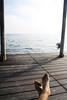 Relax... (ph_GG) Tags: feet mare piedi pontile orizzonte