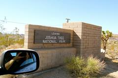 We are not leaving yet! (daveynin) Tags: california desert nps joshuatree socal deaftalent deafoutsidetalent deafoutdoortalent