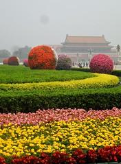 Tiananmen Square. (@Jenny@) Tags: 2012 week24 522012 52weeksthe2012edition weekofjune10flowerscoiloursyellowredgreenpinkpeoplebuildingsforbiddencityballshedgesbeijingsmog