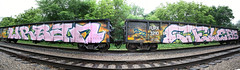Urban Celebs (Reckless Artist) Tags: railroad pink urban panorama car st train paul graffiti photo midwest artist graf united tracks large silk cities minneapolis twin trains panoramic crack full whole mpls photograph tc static gondola celebs graff uc crunk ultra freight crushers photgraphy 2012 reckless freights bencher becnh oter benching spellout sticth