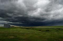 Storm Cloud (C-Dals) Tags: sky cloud storm grass weather nikon alberta silos prairie nikkor sh87 1855mmf3556gvr d5100