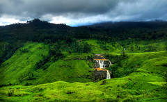 Green (tea) land (Saint-Exupery) Tags: leica landscape tea paisaje srilanka t