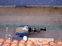 Maroc - atana studio (Anthony SJOURN) Tags: orange port studio place jardin bleu morocco maroc anthony marrakech majorelle bateau ouarzazate essaouira peche bambou jemaa aitbenhaddou elfna atana sjourn