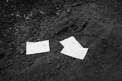 The untold stories (Tiefengeist) Tags: 50mm kodak tmax 14 delta nikonf100 400 ilford ilforddelta400 kodaktmax kodaktmaxdeveloper14 sigma50mmf14exdghsm