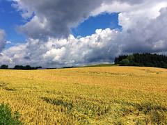 Wolken ber Schwaigwall (Helmut Reichelt) Tags: juni germany bayern deutschland bavaria sommer felder wolken braun geretsried gerstenfeld schwaigwall colorefexpro4 iphonese