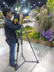 IMG_20160321_111247 (Sasha India) Tags: flowers orchid thailand orchids bangkok exibition apoc   apoc12