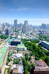 2016060034 (PMJC) Tags: fuji xe2 1024mm 23mm  tokyo        tokyotower