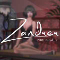 Zandrer - Image Signature (LiquidHell Carter) Tags: logo photography design graphic image signature text simple cursive watermark smoov zandrer