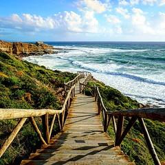 Ribeira D'Ilhas . . #ribeiradilhas #Ericeira #Escadas #stairs #portugal #portugalwestcoast #oceanoatlantico #atlanticocean #ondas #waves #milregos #fortemilregos #sonyalpha6000 #sonya6000 #sonyimages #sonyphotography #sonyalpha #sonyalphaclub #sel1650 (telmorbsantos) Tags: portugal stairs square waves squareformat atlanticocean ericeira ondas escadas ribeiradilhas oceanoatlantico milregos sonyalpha sonyalphaclub sonyphotography sonyimages instagramapp uploaded:by=instagram portugalwestcoast sel1650 sonyalpha6000 sonya6000 fortemilregos