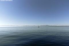 SEGELBOOT BEI IMMENSTAAD (PADDYSCHMITT.DE) Tags: boot bodensee segelboot seglerambodensee