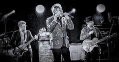 Sir Tom Jones - in concert (Andy J Newman) Tags: blackandwhite bw tom jones concert live sony gig westonbirt bandw sirtomjones silverefex