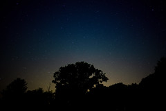 Look Up Into The Summer Sky (Dan Constien) Tags: county summer night stars star midwest minolta 28mm nighttime dane amazement awe astrology constellation madisonwisconsin stargazing clearnight sonya7 danconstien midwestmoment