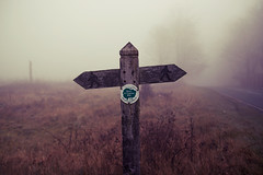 Cannock Chase Signpost (preynolds) Tags: mist fog countryside walkway cannockchase 1750mmtamron canon600d woodensignpost