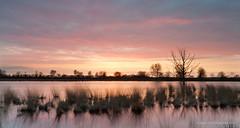 Bargerveen after sunset (Kees Waterlander) Tags: sunset zonsondergang nederland peat veen moor bog drenthe moorland bargerveen theneterlands hoogveen leehardneutraldensitygrad06nd leeproglassneutraldensityfilter06nd