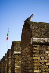 """Castel Sant'Angelo • <a style=""""font-size:0.8em;"""" href=""""http://www.flickr.com/photos/89679026@N00/6952411730/"""" target=""""_blank"""">View on Flickr</a>"""