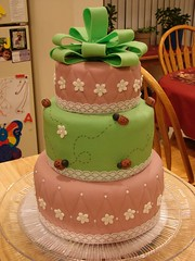 Ladybug cake by Christine S for a Shelter. Birthday Cakes 4 Free Twin Cities, MN