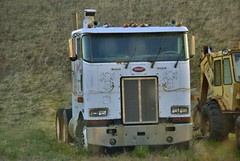 Peterbilt Cabover (raymondclarkeimages) Tags: road usa tractor canon drive highway driving diesel transport goods semi business commercial transportation hauling 7d vehicle driver trucks gasoline haulin trucking peterbilt cabover pictureof picof raymondclarkeimages 8one8studios
