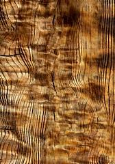 JKN©-BW-1085 (John Nakata) Tags: wood abstract design