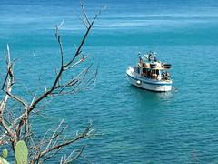 gita in barca (costagar51) Tags: italy italia mare sicily palermo sicilia capozafferano regionalgeographicsicilia rgsnatura