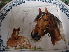 Farm Life Spring 2012 Canada 082 (Mr. Happy Face - Peace :)) Tags: horses dinner napkin plate supper platter blessed