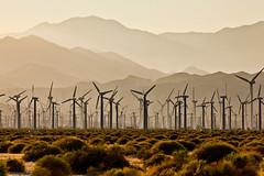 Turbines (bior) Tags: landscape palmsprings electricity powerplant windturbines ef200mmf28liiusm 200l ef200mmf28lii canoneos5dmarkii 5d2 canoneos5dmkii eos5dmarkii