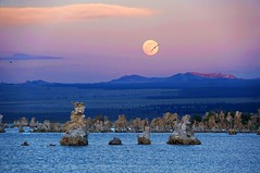 Mono Lake Moonrise (Daniel Schwabe) Tags: california ca pink sunset moon lake moonrise monolake tufa interestingness185 bestcapturesaoi elitegalleryaoi explore11jun2012