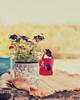 The simple life (Marga Corameta) Tags: flowers summer camp countryside peace dof purple bokeh sister campo flowerpot mallorca plantes germana estiu wateringpot sineu llubí cossiol