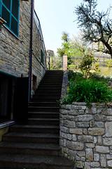 Casa Laici garden, Penna San Giovanni (MikePScott) Tags: camera trees sky italy lens italia steps marche macerata lemarche builtenvironment architecturalfeatures nikond600 pennasangiovanni nikon2470mmf28 featureslandmarks casalaici