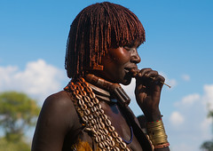 Hamer tribe woman attending a bull jumping ceremony, Omo valley, Turmi, Ethiopia (Eric Lafforgue) Tags: africa people woman shells haircut color horizontal hair outdoors necklace belt women adult african ceremony culture jewelry tribal celebration omovalley tradition ethiopia tribe ethnic hairstyle rite hamar oneperson jewel developingcountry hamer traditionalculture hornofafrica ethnology eastafrica animalskin abyssinia braidedhair traditionalclothing realpeople blackskin onewomanonly beautify waistup turmi africanethnicity 1people indigenousculture bullleaping bulljumping ethiopianethnicity ethio163615