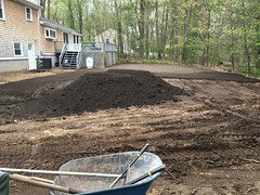 New top soil